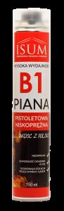 obrazek_piana_B1_www (1)